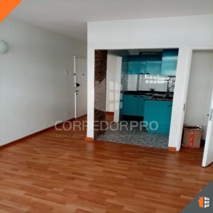 Santiago, Región Metropolitana, 1 Dormitorio Habitaciones, ,1 BañoBathrooms,Departamento,En Venta,1168