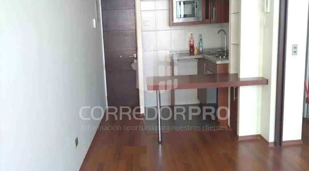 Santiago, Región Metropolitana, 1 Dormitorio Habitaciones, ,1 BañoBathrooms,Departamento,En Venta,1171