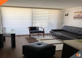 Santiago, Región Metropolitana, 1 Dormitorio Habitaciones, ,1 BañoBathrooms,Departamento,En Venta,1173