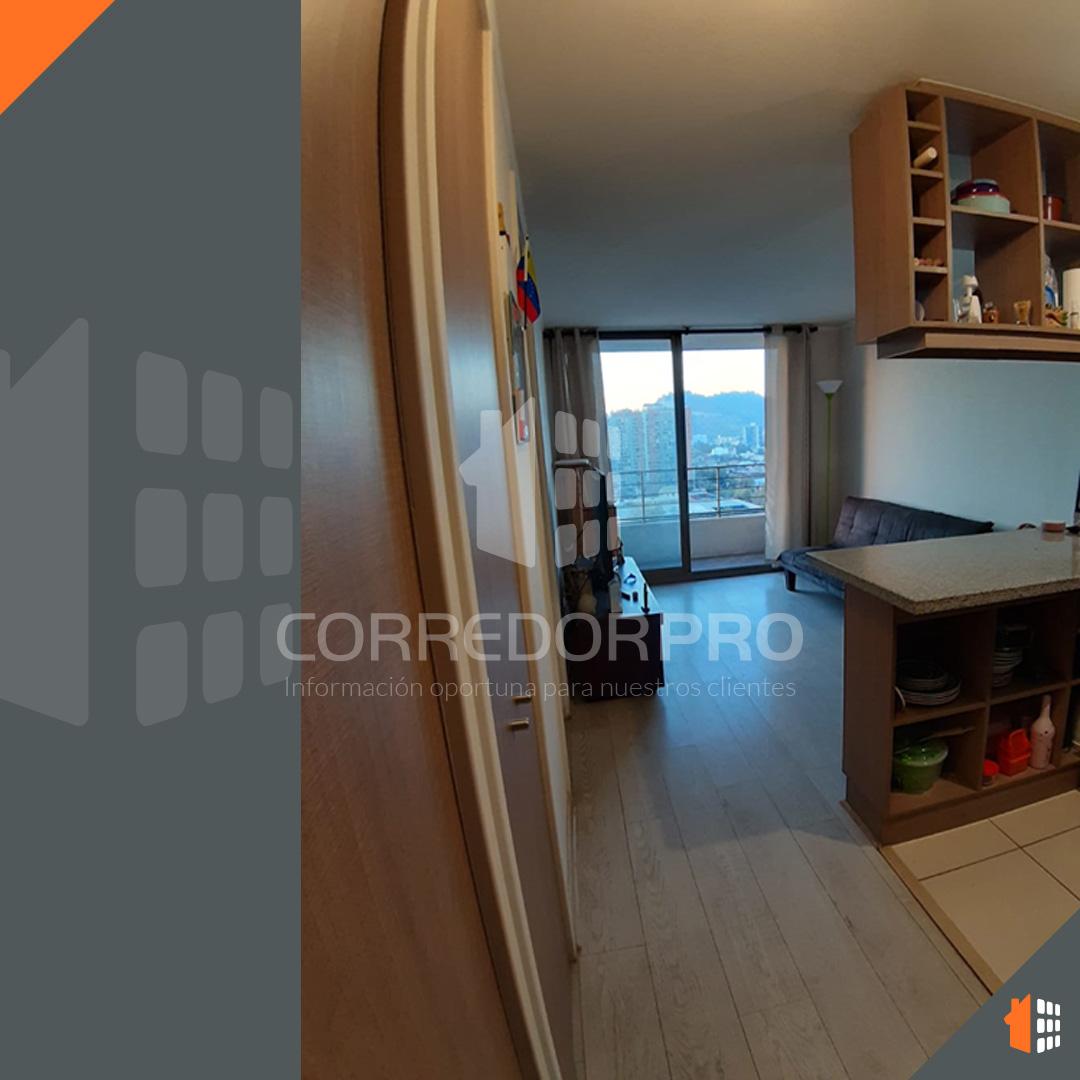 Santiago, Región Metropolitana, 1 Dormitorio Habitaciones, ,1 BañoBathrooms,Departamento,En Venta,1526